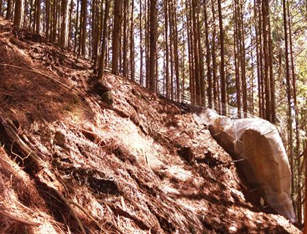 巨大岩塊落下崩落防止:巨大岩塊固定工 へのパーマリンク