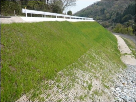 客土吹付工:NGM緑化工Ⅱ型 へのパーマリンク